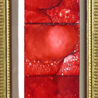 Red Series - Framed Tiles - Dragonflys Wings