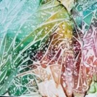 Could this be Frost - Alcohol Ink Art Tile - Dragonflys Wings